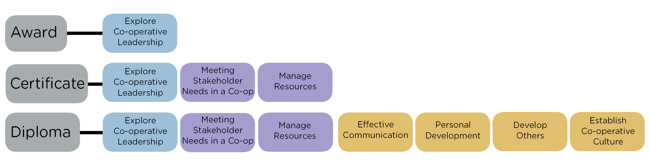 Graph showing the progression framework for the CMI award, certificate and Diploma in Introduction to Co-operative Leadership