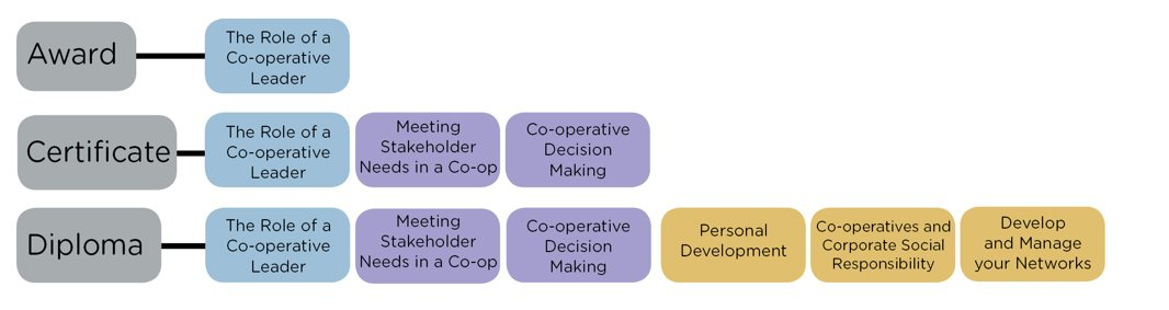 Graph showing the progression framework for the CMI award, certificate and Diploma in Becoming a Co-operative Leader