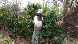 Photo of Melita, a coffee farmer in Malawi